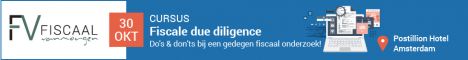 fiscale due diligence banner