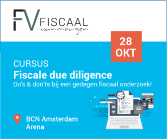 fiscale due diligence rectangle